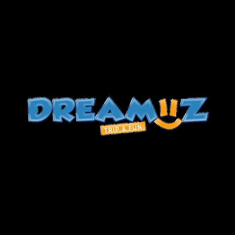 temfack-eric-tews-webdesign-chef-de-projet-digital-accueil-dreamiiz-logo
