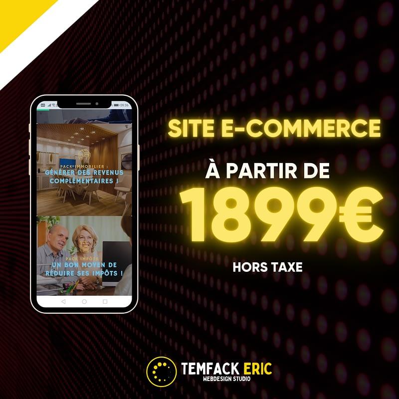 temfack-eric-tews-webdesign-chef-de-projet-digital-accueil-545