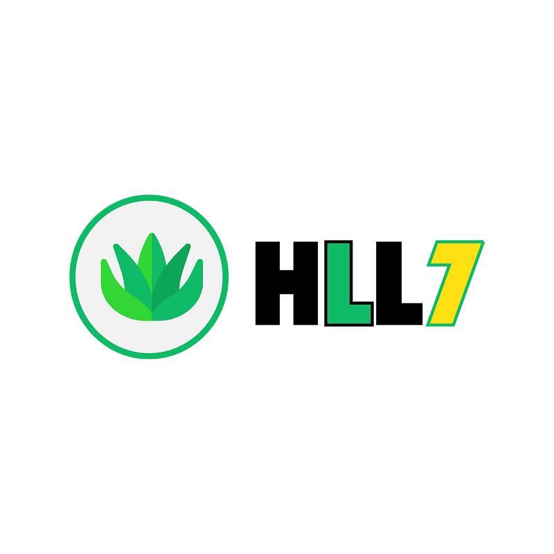 hll7-logo-temfack-eric-tews-webdesign-chef-de-projet-digital-créations